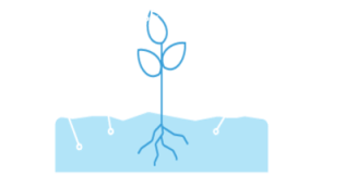 Manage Fertilizing
