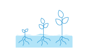 Record Farming Activities
